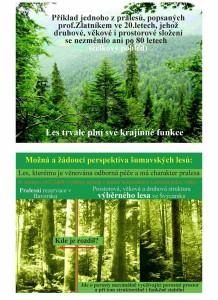 Prales- Výběrný les